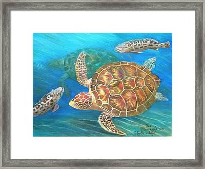 Turtle Collage Framed Print by Eleonora Mingazova