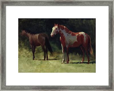 Two Horses Framed Print by Albert Bierstadt