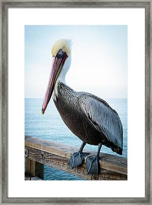 Framed Print featuring the photograph Untitled by Catherine Lau