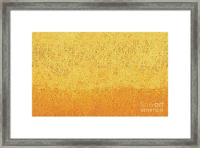 Utah Winter Sun Framed Print