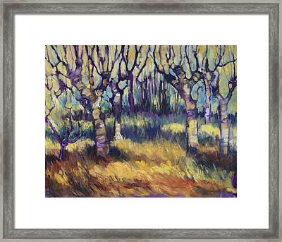 Van Gogh's Orchard Framed Print by Peggy Wilson