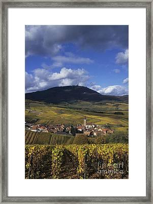 Vineyard In Alsace, France Framed Print by Jean-Louis Klein & Marie-Luce Hubert