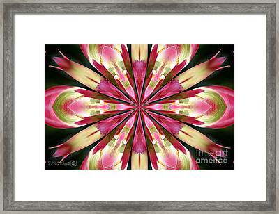 Virichic Kaleidoscope Framed Print