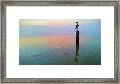 Watching Over Pensacola Bay Framed Print by JC Findley