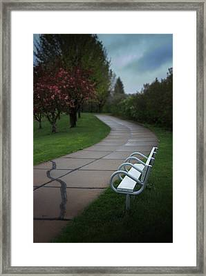 White Bench By Pedestrian Path Framed Print by Donald  Erickson