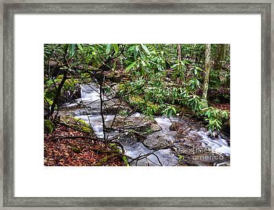 White Oak Run In Spring Framed Print by Thomas R Fletcher