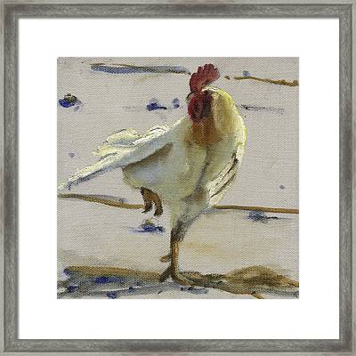 Framed Print featuring the painting White Rooster by John Reynolds