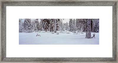 Winter Snowstorm In The Lake Tahoe Framed Print