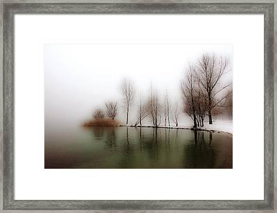 Winter Trees Framed Print by Joana Kruse