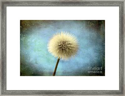 Wish Of A Lifetime Framed Print