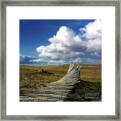 Wooden Posts Framed Print