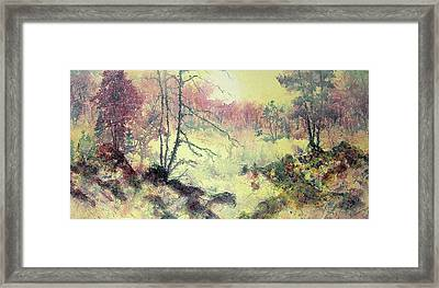 Woods And Wetlands Framed Print