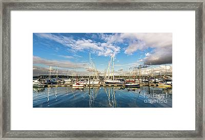 Yachts Framed Print by Svetlana Sewell