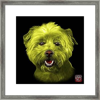 Yellow West Highland Terrier Mix - 8674 - Bb Framed Print