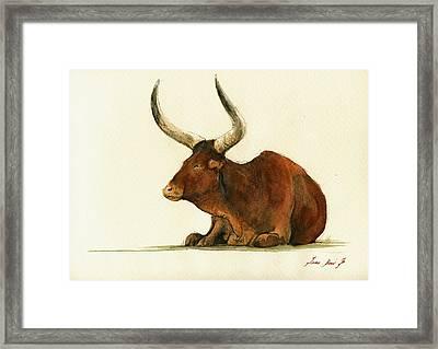 Zebu Cattle Art Painting Framed Print by Juan  Bosco
