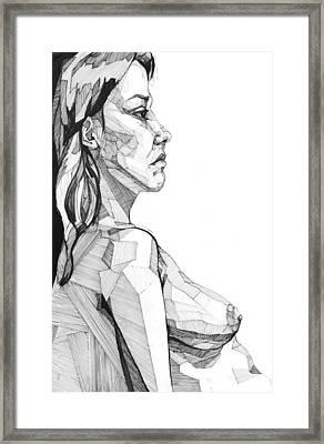 20140120 Framed Print