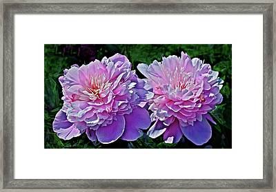Framed Print featuring the photograph 2018 Anniversary Peonies by Janis Nussbaum Senungetuk
