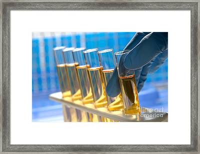 Laboratory Test Tubes In Science Research Lab Framed Print by Olivier Le Queinec