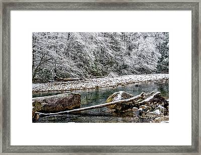 Winter Along Cranberry River Framed Print