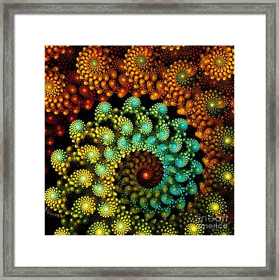 212-rolled Up Framed Print by Silvia Giussani