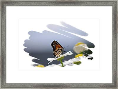 Butterfly Framed Print by Gerald Kloss