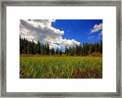 Landscape Pics Framed Print