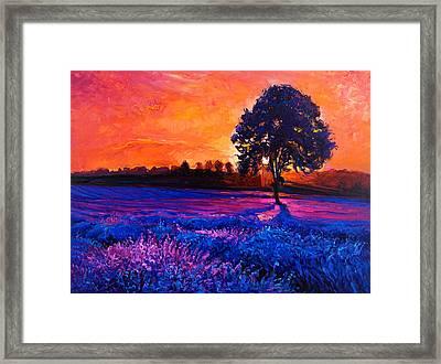 Lavender Fields By Ivailo Nikolov Framed Print by Boyan Dimitrov