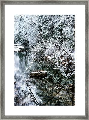 Winter Along Cranberry River Framed Print