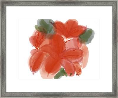 Red Tiger Framed Print