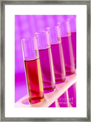 Test Tubes In Science Research Lab Framed Print by Olivier Le Queinec