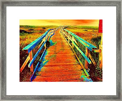 2355z  Wooden  Walkway Framed Print by Ed Immar