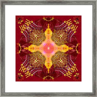 2395 - Mandala Pulsating Heart 2017 Framed Print