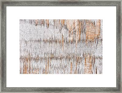 Weathered Wood Framed Print by Tom Gowanlock