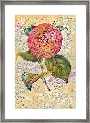 Shabby Chic Botanical Flowers Framed Print