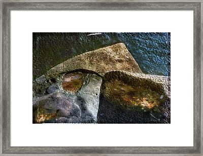 Stone Sharkhead Framed Print