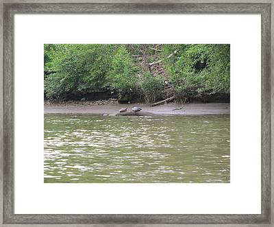 Virginia Scenes Framed Print