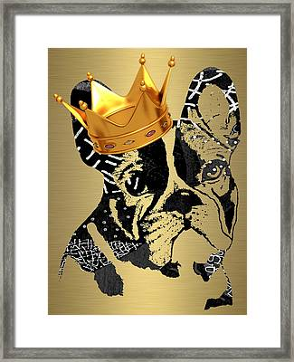 French Bulldog Collection Framed Print