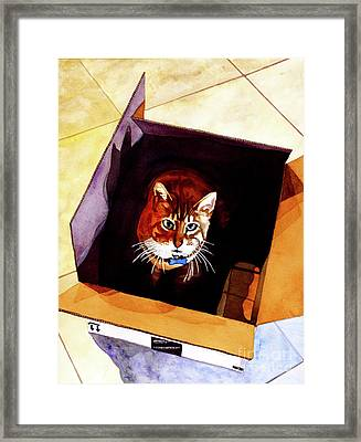 #260 Cat In The Box Framed Print by William Lum