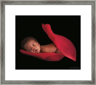 Amaya In A Rose Petal Framed Print