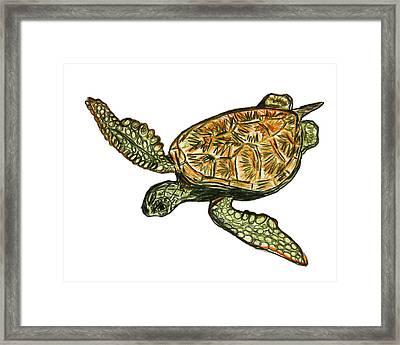 Sea Turtle Framed Print by W Gilroy