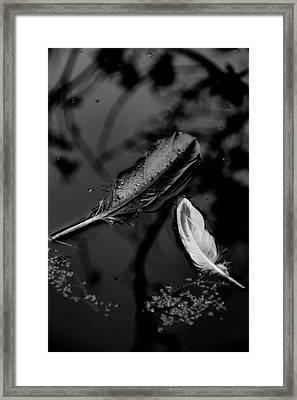 Surface Deep - Bw Framed Print by Marilyn Wilson