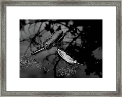 On The Surface - Bw Framed Print by Marilyn Wilson