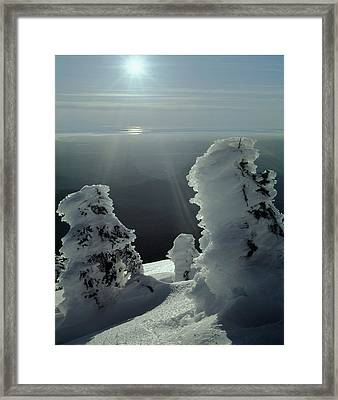 2m4415 A Ice Covered Trees Over Puget Sound Framed Print