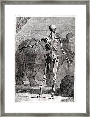 18th Century Anatomical Engraving Framed Print by Science Source