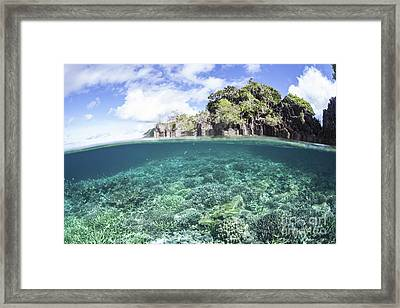 A Beautiful Coral Reef Grows Near A Set Framed Print