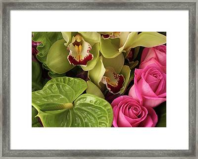 A Close-up Of A Bouquet Of Flowers Framed Print by Nicholas Eveleigh