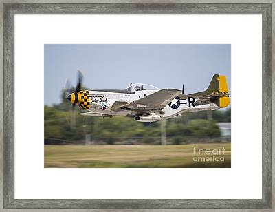 A P-51 Mustang Takes Off From Waukegan Framed Print by Rob Edgcumbe