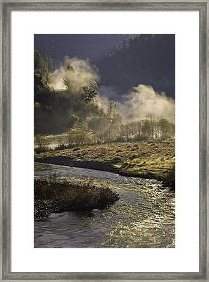 Framed Print featuring the photograph Dog In The Fog by Sherri Meyer