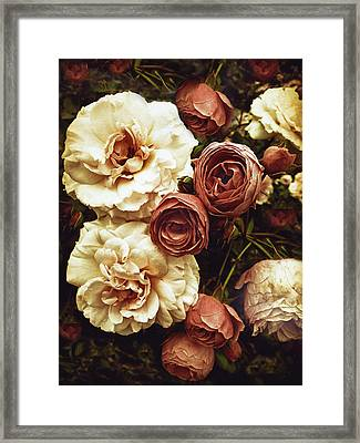 Antique Roses Framed Print
