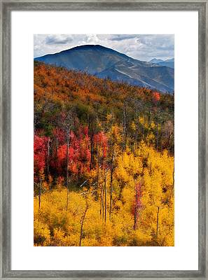 Autumn In The Wasatch Mountains Framed Print by Utah Images